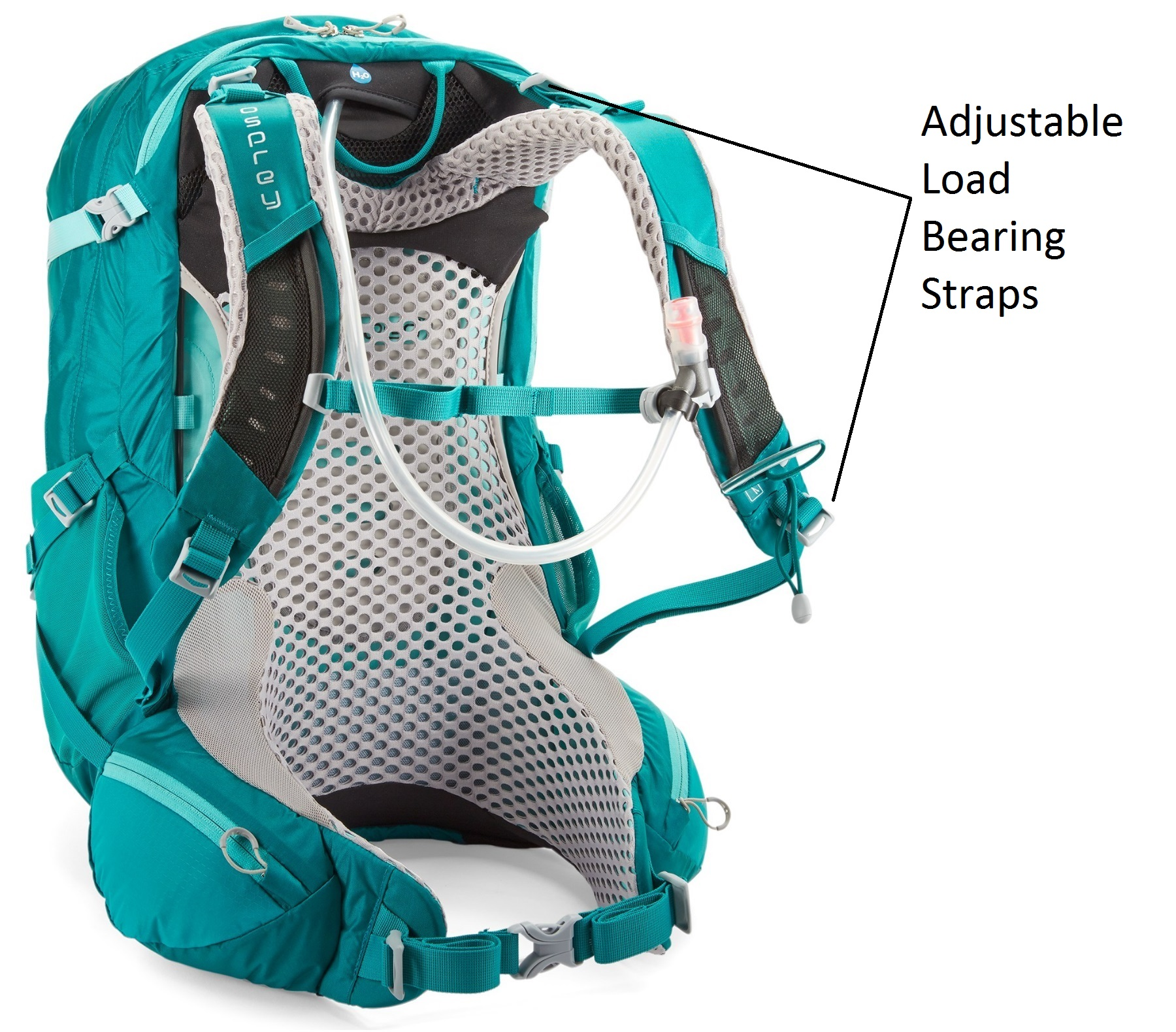 Adjustable Straps on Women's Backpacks