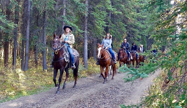 Horseback Riding in Glenwood Springs CO