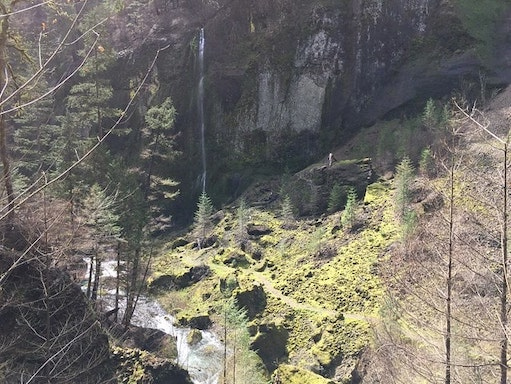 There was a fire in the Wahclella falls trail.